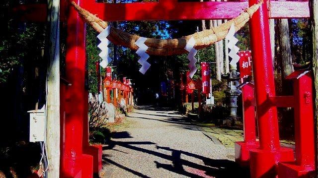 17010市貝芝桜公園初日の出 076.JPG