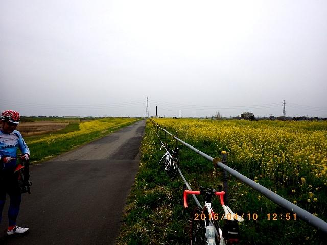 2016渡良瀬ミーティング160410 021.JPG