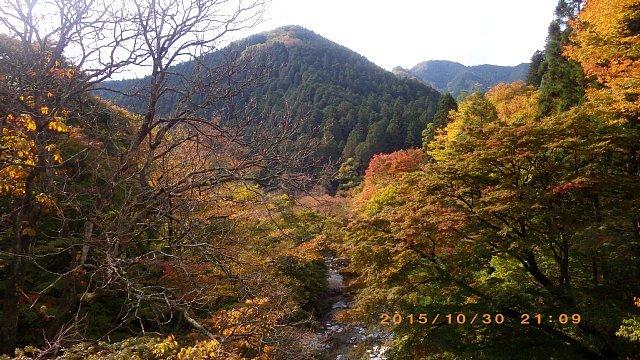 古峯ヶ原151030 030.JPG