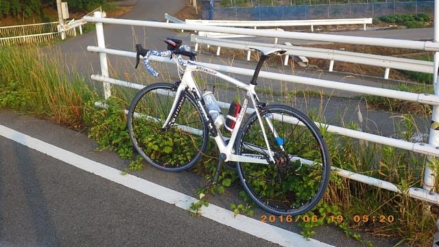 岩瀬1606189 006.JPG