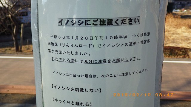 RIMG1574.JPG